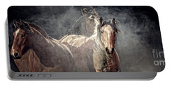 Equine Appearance Portable Battery Charger