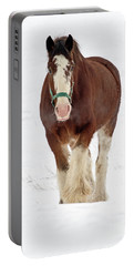 Portable Battery Charger featuring the photograph Equus Caballus.. by Nina Stavlund