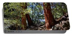 Ernie Maxwell Scenic Trail - Idyllwild Portable Battery Charger by Glenn McCarthy