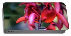 Portable Battery Charger featuring the photograph Erythrina Crista Galli Flower Spain Square Cadiz Spain by Pablo Avanzini