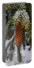 Portable Battery Charger featuring the photograph Essence Of Winter  by Bruce Carpenter