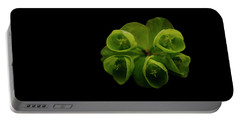 Euphorbia Portable Battery Charger