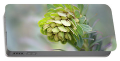 Portable Battery Charger featuring the photograph Euphorbia by Linda Lees