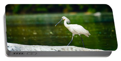 Eurasian Spoonbill Walking On The Riverside. Portable Battery Charger by Nila Newsom