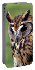 Eurasian Striped  Owl Portable Battery Charger