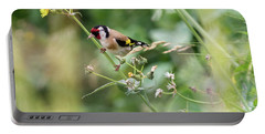 European Goldfinch Perched On Flower Stem B Portable Battery Charger