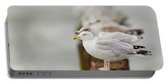 European Herring Gulls In A Row Fading In The Background Portable Battery Charger