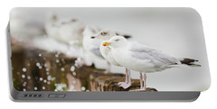 European Herring Gulls In A Row  Portable Battery Charger