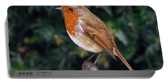European Robin Erithacus Rubecula Portable Battery Charger