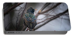 European Starling In Non Breeding Colors Portable Battery Charger