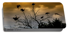 Portable Battery Charger featuring the photograph Evening Storks by Cliff Norton