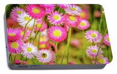 Portable Battery Charger featuring the photograph Everlasting Daisies, Kings Park by Dave Catley