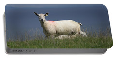 Ewe Guarding Lamb Portable Battery Charger