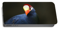 Portable Battery Charger featuring the photograph Exotic Bird by Heidi Poulin