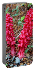 Portable Battery Charger featuring the photograph Exotic Flower Or  by Marie Neder