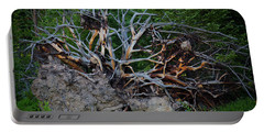 Exposed Roots Portable Battery Charger by John Roberts