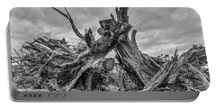 Exposed Roots Portable Battery Charger