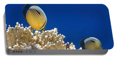 Exquisite Butterflyfish And Corals 3 Portable Battery Charger