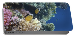 Exquisite Butterflyfish Panorama  Portable Battery Charger