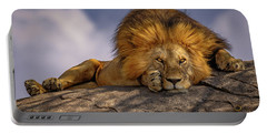 Eye Contact On The Serengeti Portable Battery Charger