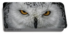Portable Battery Charger featuring the photograph Eye-to-eye by Brad Allen Fine Art