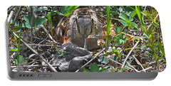 Eye To Eye Level With Lady Woodcock Portable Battery Charger