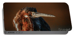 Eye To Eye With Heron Portable Battery Charger
