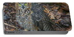 Eye To Eye With Owl Portable Battery Charger by Tom Claud