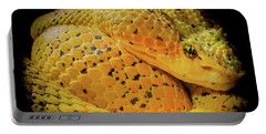 Portable Battery Charger featuring the photograph Eyelash Viper by Karen Wiles