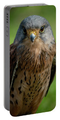 Portable Battery Charger featuring the photograph Eyes by Cliff Norton