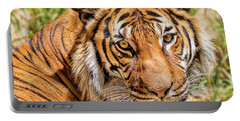 Eyes Of A Tiger Portable Battery Charger