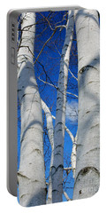 Eyes Of Birch Portable Battery Charger