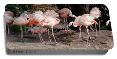 Fabulous Flamingos Portable Battery Charger