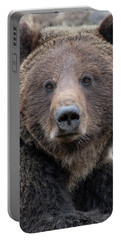 Face Of The Grizzly Portable Battery Charger