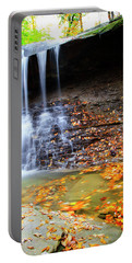 Fall At Blue Hen Falls Portable Battery Charger
