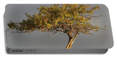Fall At The Crabapple Tree Portable Battery Charger