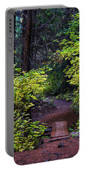 Metolius River Trail Fall Bridge Portable Battery Charger