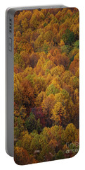 Portable Battery Charger featuring the photograph Fall Cluster by Eric Liller