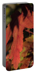 Fall Color 5528 16 Portable Battery Charger
