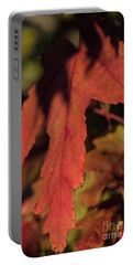 Fall Color 5528 16 Portable Battery Charger by M K  Miller