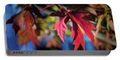 Fall Color 5528 19 Portable Battery Charger
