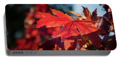 Fall Color 5528 23 Portable Battery Charger by M K  Miller