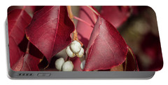Fall Color 5528 27 Portable Battery Charger