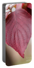 Fall Color 5528 52 Portable Battery Charger