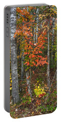 Fall Color At Gladwin 4543 Portable Battery Charger