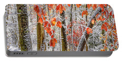 Fall Color Autumn Snow Portable Battery Charger