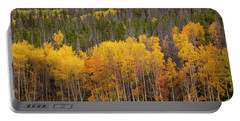 Fall Color Portable Battery Charger