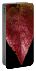 Fall Colors 3 Portable Battery Charger