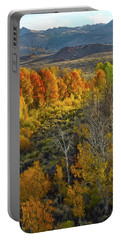 Fall Colors At Aspen Canyon Portable Battery Charger