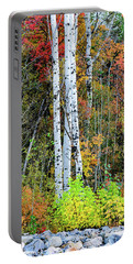 Portable Battery Charger featuring the photograph Fall Colors by Bryan Carter